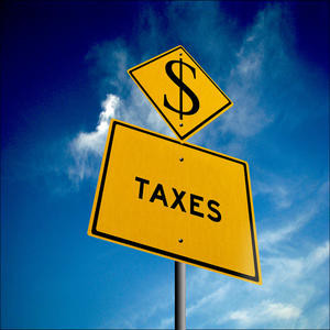 Small Business Tax Survival Basics – Should you hire a pro?